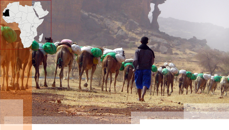 mauritania-copertina-ar